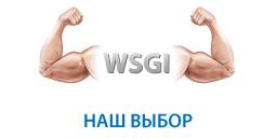 WSGI — Наш выбор!